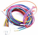 Goodman 0259F00007P Assy, Wire Harness 12-Pin (Df)