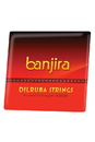 banjira Dilruba String Set