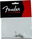 Fender Slotted Tuner Mount Screws