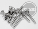 Stainless Oval Head Phillips Screw For Handles