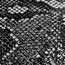 Mojotone Snakeskin Tolex / 54