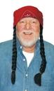 Morris Costumes 13-734BG Wig The Old Hippie Black Gray