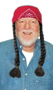 Morris Costumes 13-734BN Wig The Old Hippie Brown