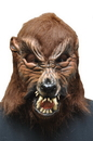 Morris Costumes 45-08BS Howl O Ween
