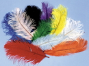 Morris Costumes BB-05RD Ostrich Plumes Red