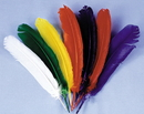 Morris Costumes BB-07BU Indian Feathers Blue