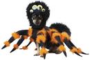 California Costumes CC-20149MD Pet Spider Medium