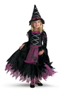 Disguise DG-3216S Fairy Tale Witch 2T