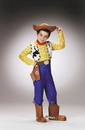 Disguise DG-5234L Toy Story Woody Dlx Ch 4 To 6