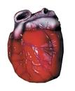 Morris Costumes DU-1095 Heart