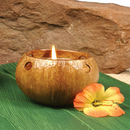 Funny Fashion FF-860021 Coconut Tealight Candle Holder