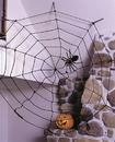 Fun World FW-8491BK Spider Web 9Ft Rope Blk