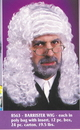 Fun World FW-8563 Wig Judge White