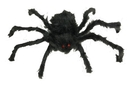 Fun World FW-9891 Spider 20In Hairy Poseable