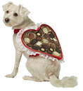 Rasta Imposta GC-5001XL Chocolate Box Dog Costume Xl