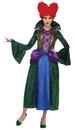 Morris Costumes LF-5992CSM Salem Sister Child 4-6