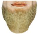 Lacey Wigs LW-572CBL Beard F Face M55 Blend C Bl 22