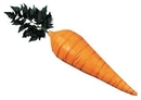 Morris Costumes MP-12 Carrot 21 Inch Foam Filled