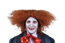 Morris Costumes MR-179522 Mad Party Wig