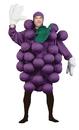 Morris Costumes PA-9500 Grapes Purple Adult Costume