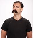 Paper Magic PM-531223 Mustache The English Brown