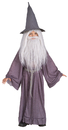 Rubie's RU-38781LG Gandalf Large 12 To 14