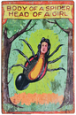Morris Costumes SS-45529 Carnival Sign Spider Girl 17In