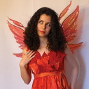 Morris Costumes TA-454 Wings Azarelle Red