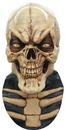 Morris Costumes TB-26454 Grinning Skull