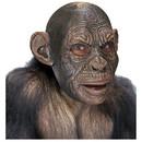 Morris Costumes TB-50030 Blake Ape Ad Latex Mask