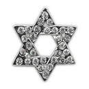 Mirage Pet Products 10-27 38SOD Holiday 10mm Slider Charms Star of David