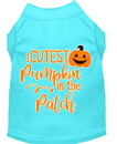 Mirage Pet Products 51-426 AQMD Cutest Pumpkin in the Patch Screen Print Dog Shirt Aqua Med