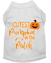 Mirage Pet Products 51-426 WTMD Cutest Pumpkin in the Patch Screen Print Dog Shirt White Med