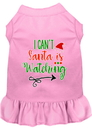 Mirage Pet Products 58-424 LPK4X I Can't, Santa is Watching Screen Print Dog Dress Light Pink 4X