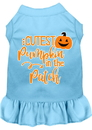 Mirage Pet Products 58-426 BBLXXL Cutest Pumpkin in the Patch Screen Print Dog Dress Baby Blue XXL