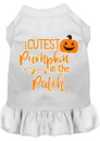 Mirage Pet Products 58-426 WTMD Cutest Pumpkin in the Patch Screen Print Dog Dress White Med