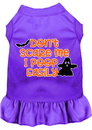 Mirage Pet Products 58-427 PR4X Don't Scare Me, Poops Easily Screen Print Dog Dress Purple 4X