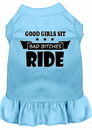 Mirage Pet Products Bitches Ride Screen Print Dog Dress