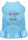 Mirage Pet Products 58-68 BBLXL Bunny is my Bestie Screen Print Dog Dress Baby Blue XL
