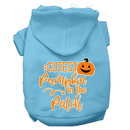 Mirage Pet Products 62-426 BBLMD Cutest Pumpkin in the Patch Screen Print Dog Hoodie Baby Blue M