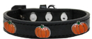 Mirage Pet Products 631-26 BK10 Pumpkin Widget Dog Collar Black Size 10