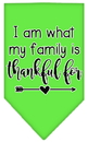 Mirage Pet Products 66-435 LGLG I Am What My Family is Thankful For Screen Print Bandana Lime Green Large