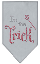 Mirage Pet Products 67-89 SMGY I'm the Trick Rhinestone Bandana Grey Small