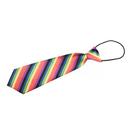 TopTie Kid's Rainbow Stripe Neckties 10