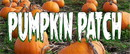 NEOPlex BN0108-3 Halloween Stop By Our Pumpkin Patch 30