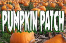 NEOPlex BN0108 Pumpkin Patch 24