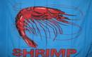 NEOPlex F-2499 Shrimp Blue 3'X 5' Flag
