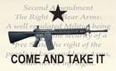 NEOPlex F-8032 Come And Take It 2Nd Amendment Custom 3'X 5' Flag