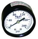 Zee Line 1561 Air gauge for p/n 1554 air regulator 1/8