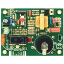 Dinosaur Electronics Ignitor Board - Small, Post